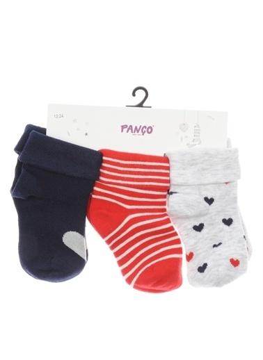 Panço Kız Bebek 3 lü Çorap 1723623108 Renksiz